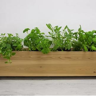 alimentation-jardinage4