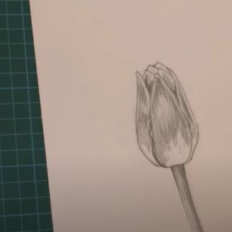 arts-peinture-dessin2